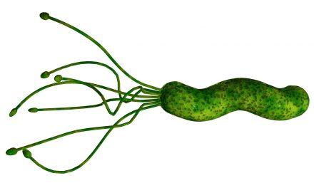 De Helicobacter Pylori anders bekeken