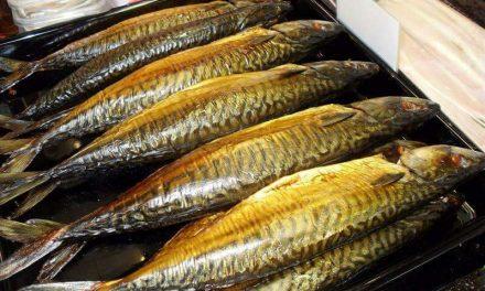 Makreel rijk aan Omega 3