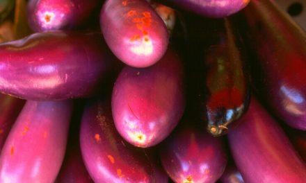 Reseta: Krema di Berehein (vegetariano)